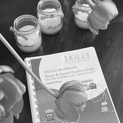 Gratis e-books van SKILLS Coaching Academy